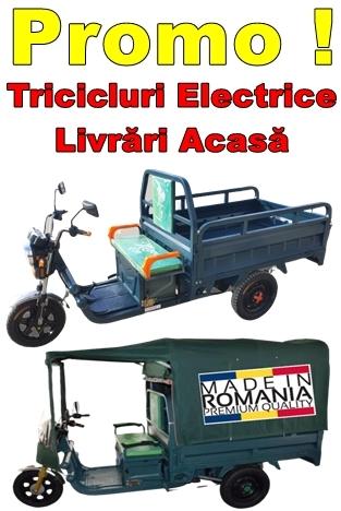 Oferte Tricicluri